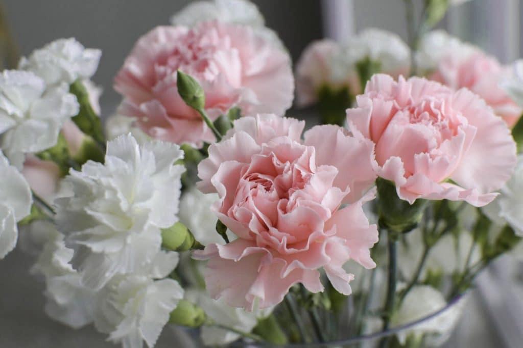 Les fleurs pour un mariage en hiver